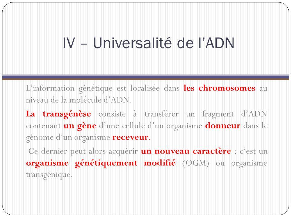 IV – Universalité de l'ADN L'information génétique est localisée dans les chromosomes au niveau de la molécule d'ADN.