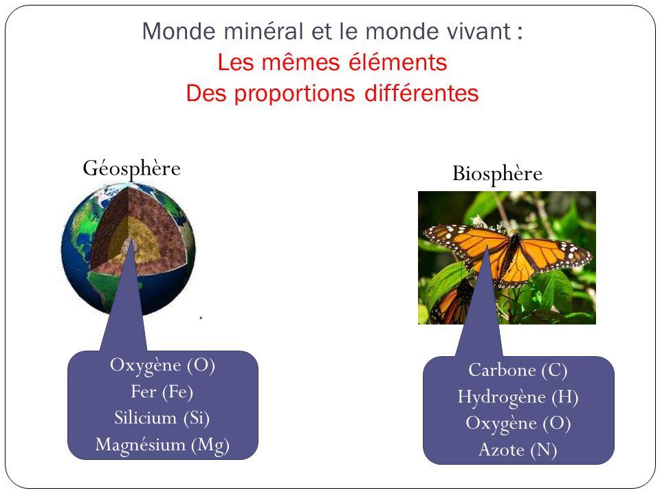 Monde minéral et le monde vivant : Les mêmes éléments Des proportions différentes Géosphère Biosphère Oxygène (O) Fer (Fe) Silicium (Si) Magnésium (Mg) Carbone (C) Hydrogène (H) Oxygène (O) Azote (N)