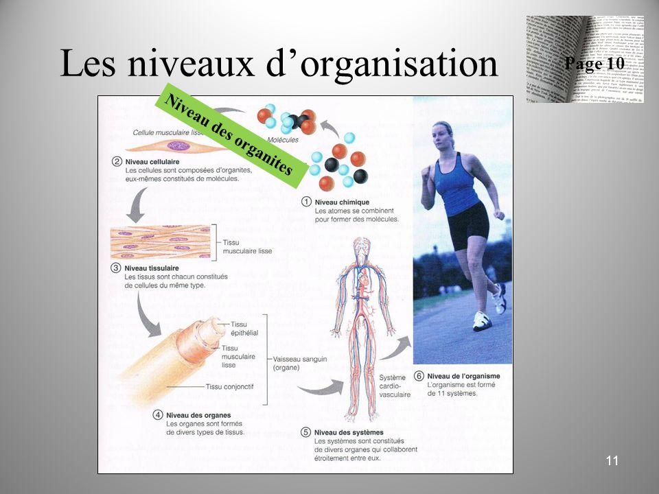 11 Les niveaux d'organisation Page 10 Niveau des organites