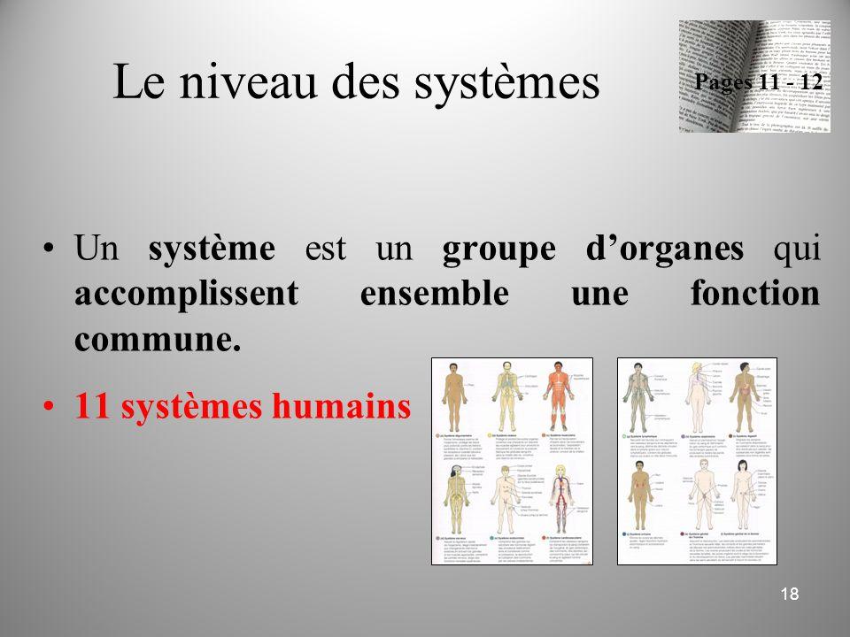 Le niveau des systèmes Un système est un groupe d'organes qui accomplissent ensemble une fonction commune. 11 systèmes humains 18 Pages 11 - 12