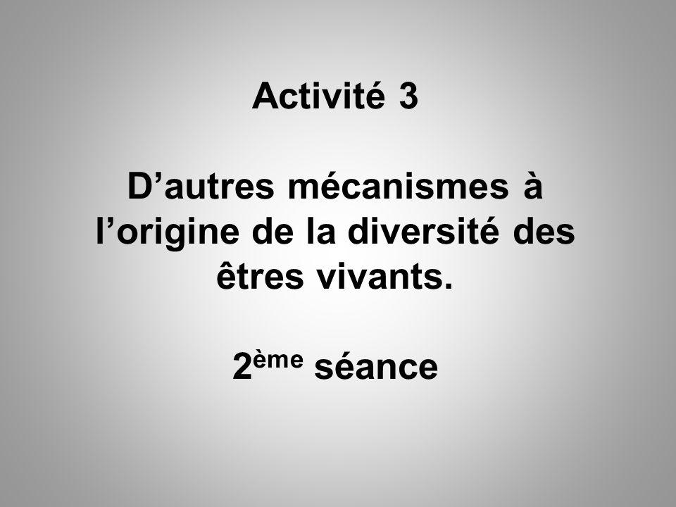 Activité 3 D'autres mécanismes à l'origine de la diversité des êtres vivants. 2 ème séance