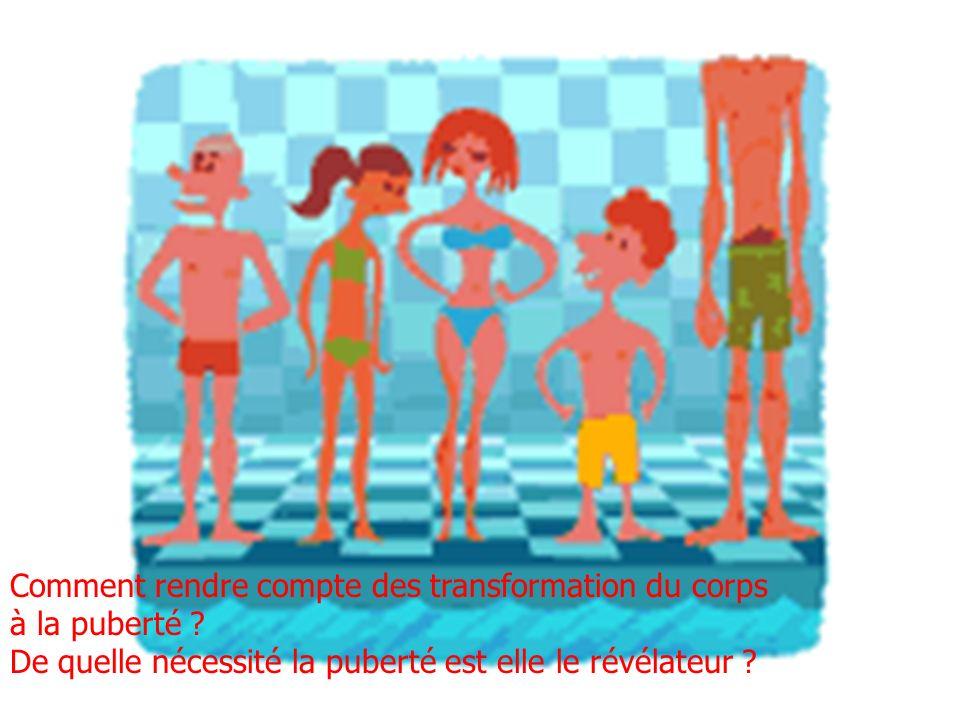 Comment rendre compte des transformation du corps à la puberté ? De quelle nécessité la puberté est elle le révélateur ?