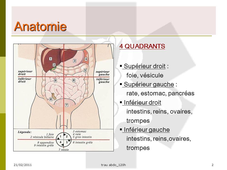 21/02/2011trau abdo_120h3 Anatomie DEUX ESPACES:  Péritonéal (la vraie cavité abdominale):  contient: grêle, gros intestin, rate, foie, estomac, vésicule, reproduction femme  Rétro péritonéal: contient : reins, uretères, vessie, VCI, Ao, pancréas