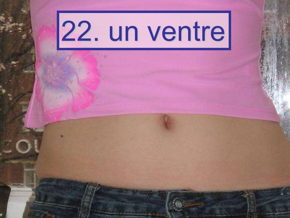 22. un ventre