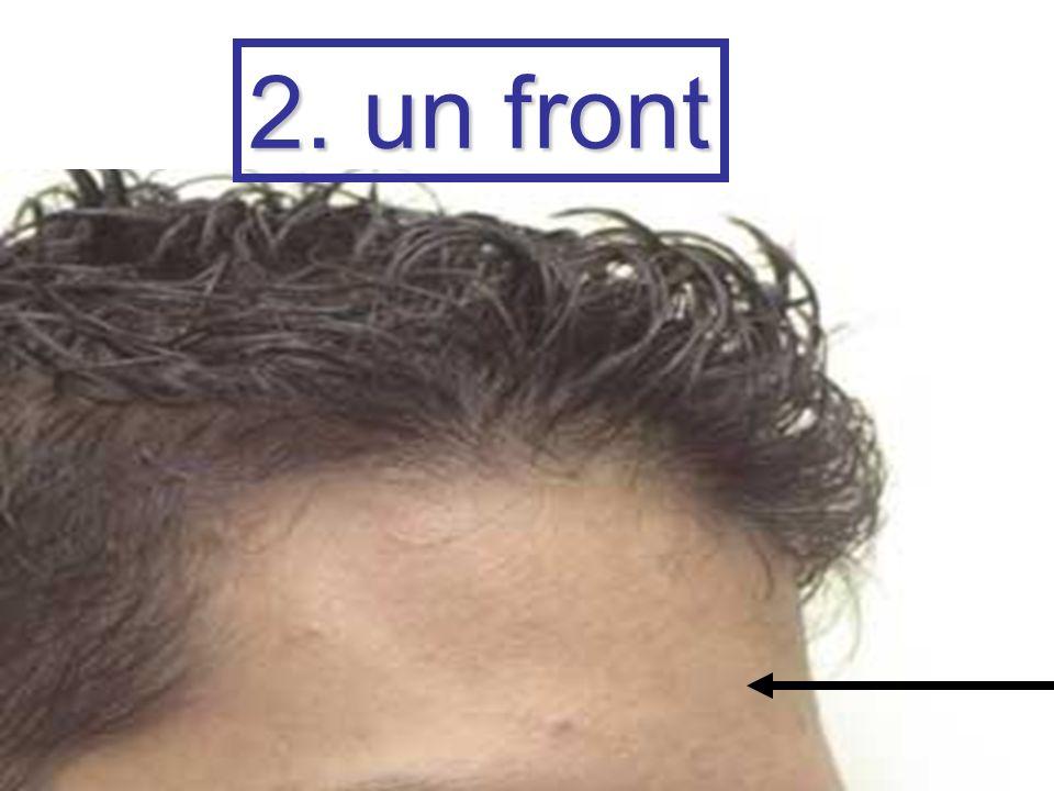 2. un front