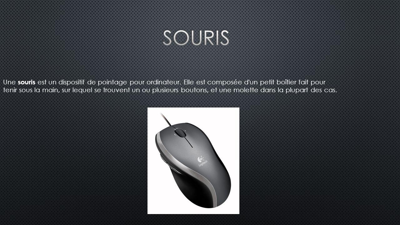 Une souris est un dispositif de pointage pour ordinateur.