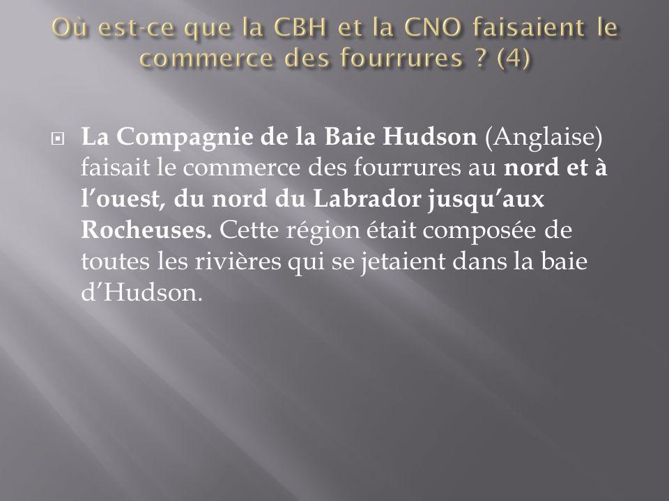  La Compagnie de la Baie Hudson (Anglaise) faisait le commerce des fourrures au nord et à l'ouest, du nord du Labrador jusqu'aux Rocheuses.