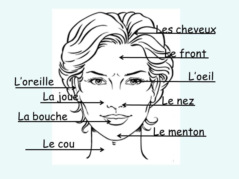 Le cou La joue Le menton La bouche Le nez L'oreille L'oeil Le front Les cheveux