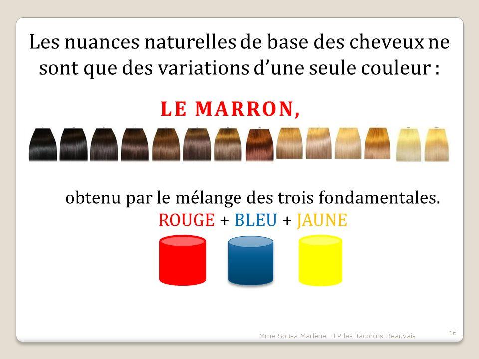 Mme Sousa Marlène LP les Jacobins Beauvais 16 Les nuances naturelles de base des cheveux ne sont que des variations d'une seule couleur : LE MARRON, obtenu par le mélange des trois fondamentales.