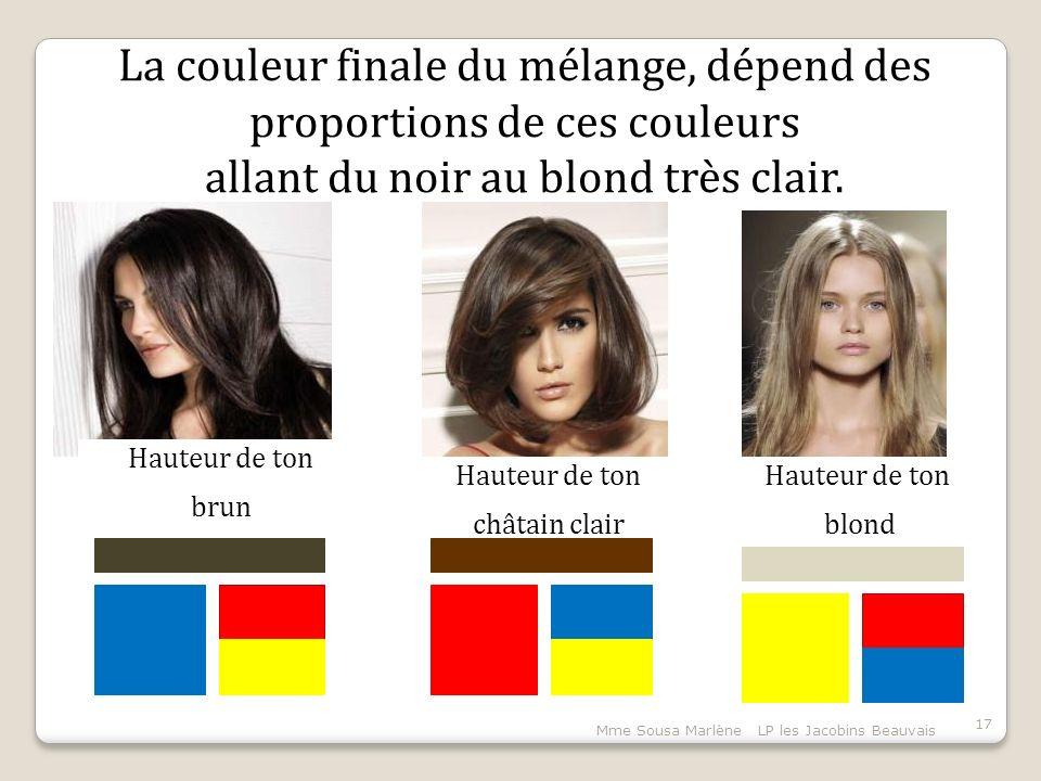 Mme Sousa Marlène LP les Jacobins Beauvais 17 La couleur finale du mélange, dépend des proportions de ces couleurs allant du noir au blond très clair.