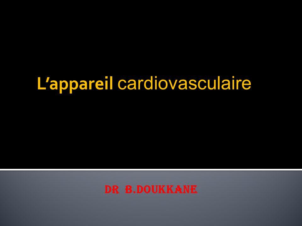I/ L'appareil cardiovasculaire : a) Le cœur: 1.Définition.