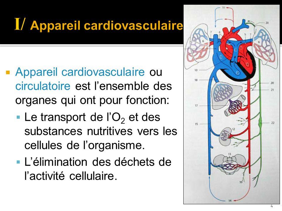  Appareil cardiovasculaire ou circulatoire est l'ensemble des organes qui ont pour fonction:  Le transport de l'O 2 et des substances nutritives ver