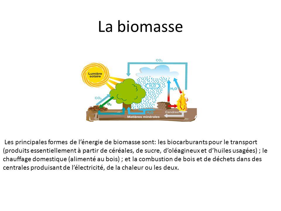 La biomasse Les principales formes de l'énergie de biomasse sont: les biocarburants pour le transport (produits essentiellement à partir de céréales, de sucre, d'oléagineux et d'huiles usagées) ; le chauffage domestique (alimenté au bois) ; et la combustion de bois et de déchets dans des centrales produisant de l'électricité, de la chaleur ou les deux.