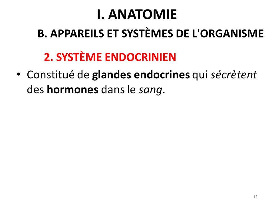 2.SYSTÈME ENDOCRINIEN Constitué de glandes endocrines qui sécrètent des hormones dans le sang.