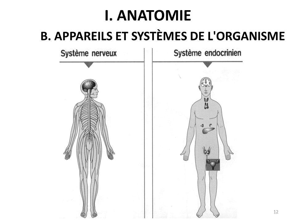 12 I. ANATOMIE B. APPAREILS ET SYSTÈMES DE L ORGANISME