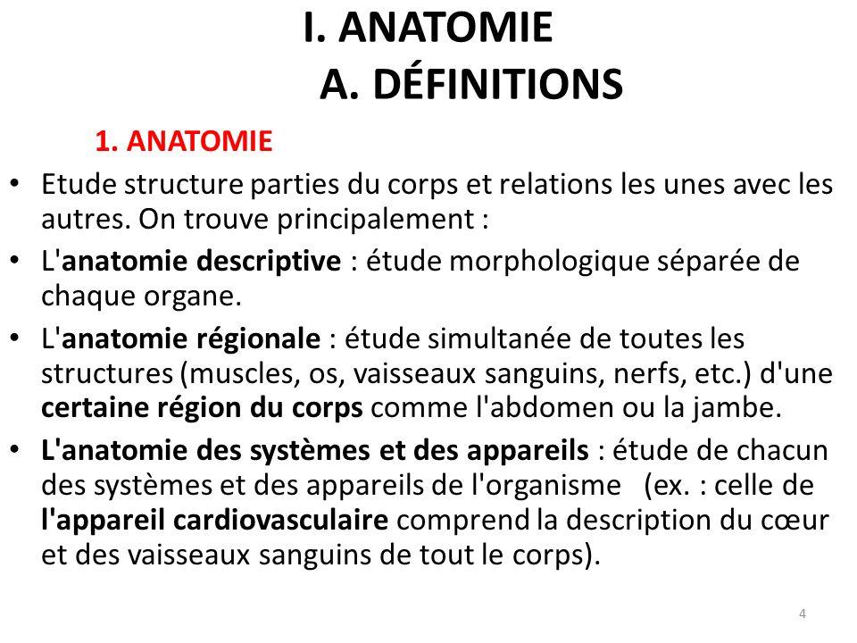 I.ANATOMIE A. DÉFINITIONS 1.