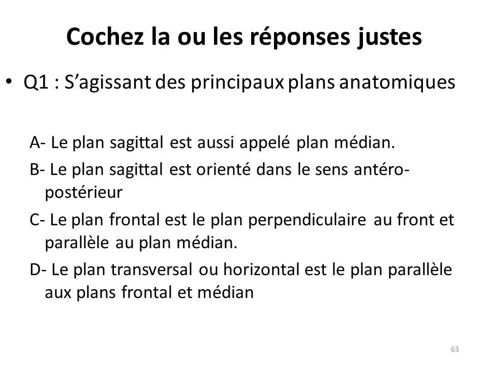 Q1 : S'agissant des principaux plans anatomiques A- Le plan sagittal est aussi appelé plan médian.