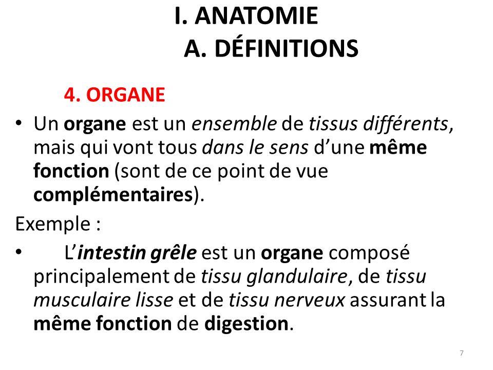 I. ANATOMIE B. APPAREILS ET SYSTÈMES DE L ORGANISME 18