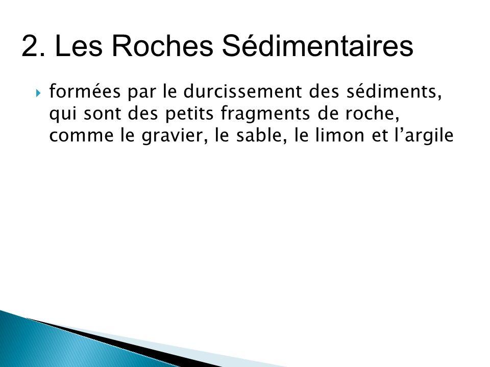  formées par le durcissement des sédiments, qui sont des petits fragments de roche, comme le gravier, le sable, le limon et l'argile 2.