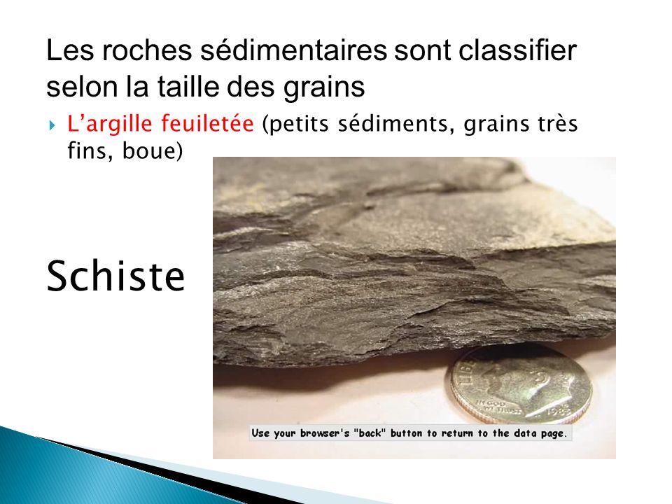  L'argille feuiletée (petits sédiments, grains très fins, boue) Schiste Les roches sédimentaires sont classifier selon la taille des grains