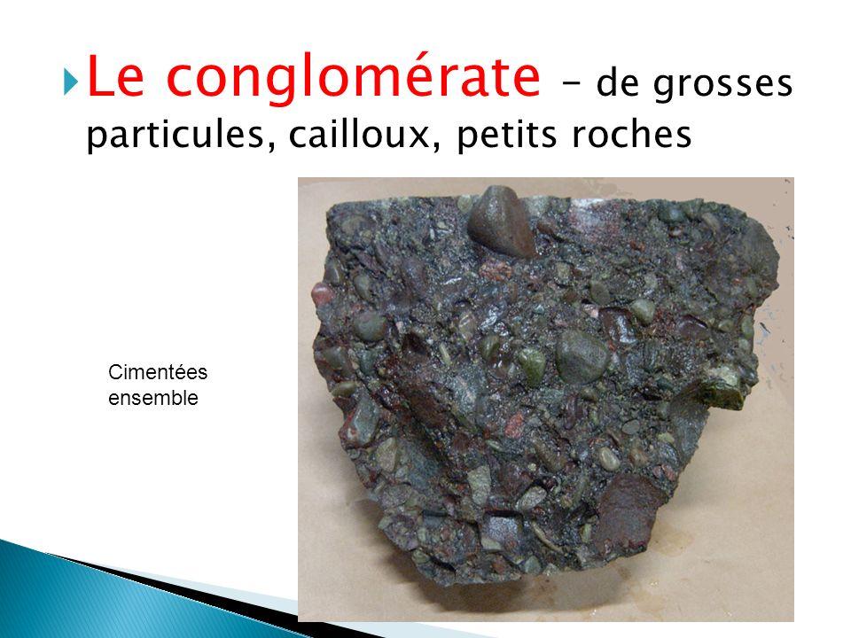  Le conglomérate – de grosses particules, cailloux, petits roches Cimentées ensemble
