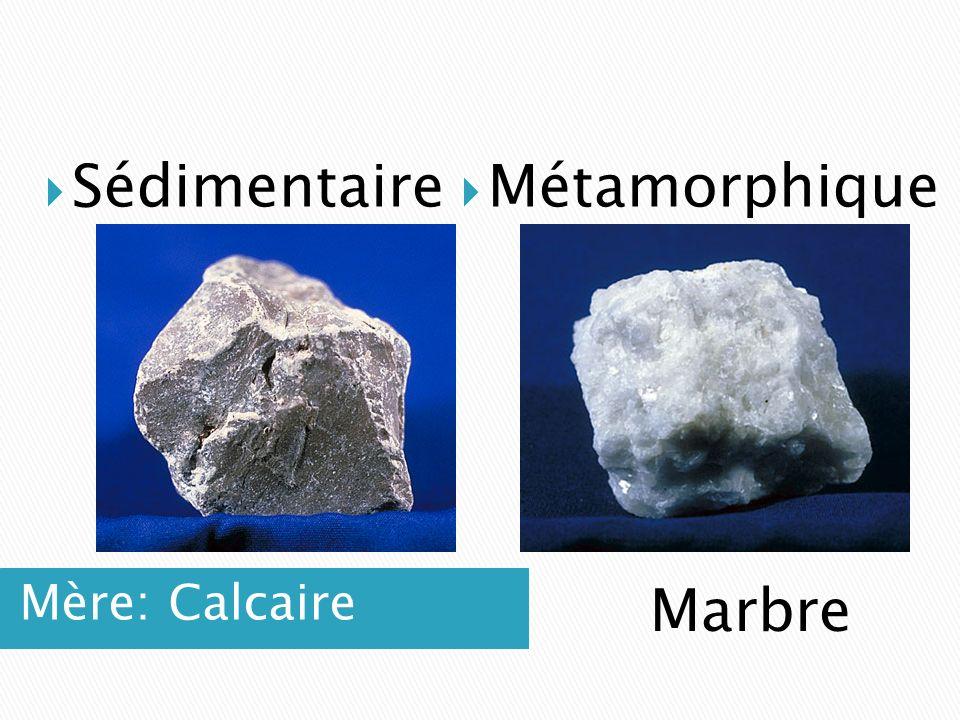 Mère: Calcaire  Sédimentaire  Métamorphique Marbre