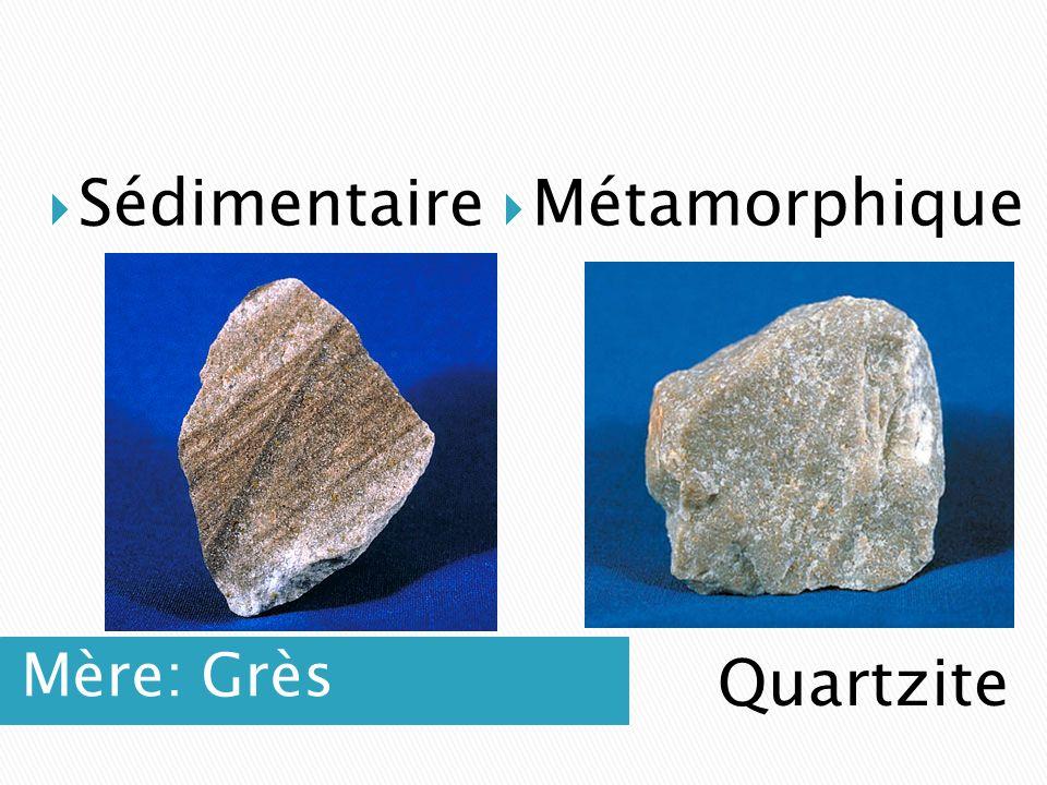 Mère: Grès  Sédimentaire  Métamorphique Quartzite