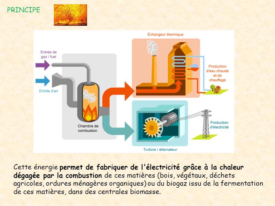 PRINCIPE Cette énergie permet de fabriquer de l'électricité grâce à la chaleur dégagée par la combustion de ces matières (bois, végétaux, déchets agri