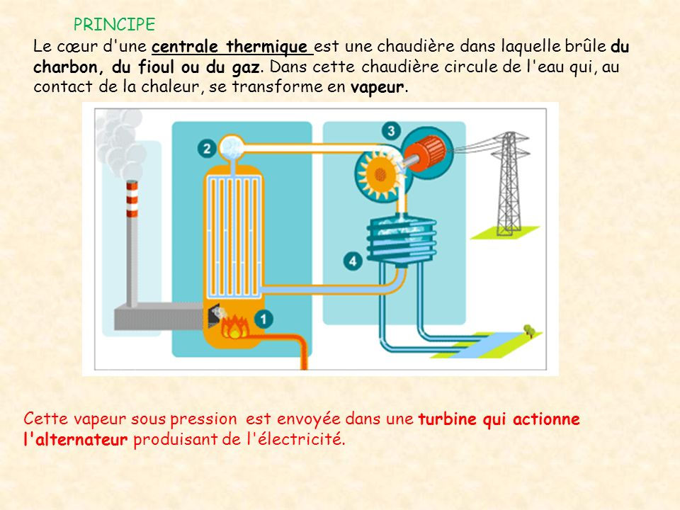 PRINCIPE Le cœur d'une centrale thermique est une chaudière dans laquelle brûle du charbon, du fioul ou du gaz. Dans cette chaudière circule de l'eau
