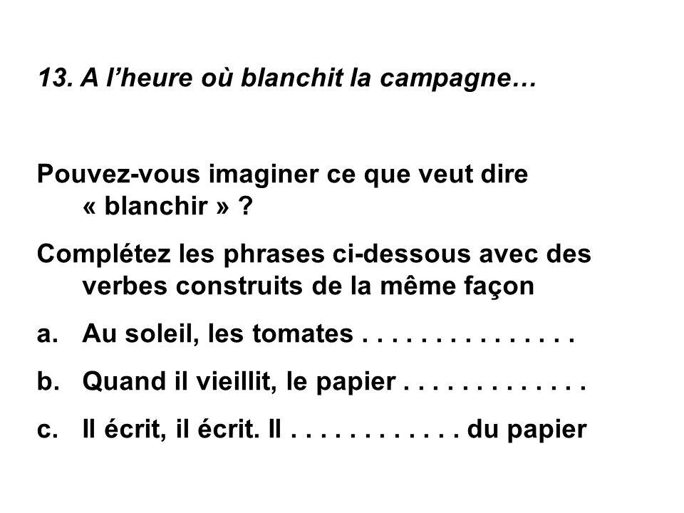 13.A l'heure où blanchit la campagne… Pouvez-vous imaginer ce que veut dire « blanchir » .
