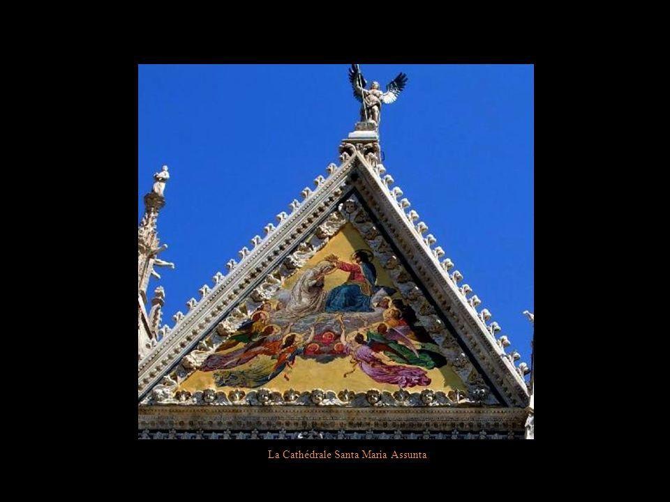 La Cathédrale Santa Marie Assunta