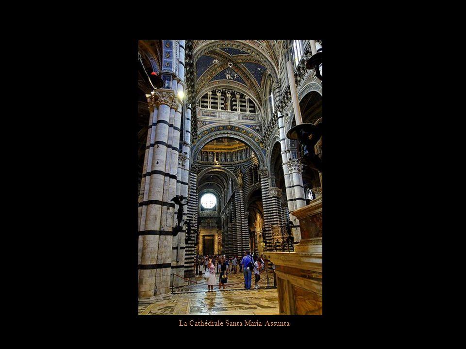 La Cathédrale Santa Maria Assunta Fresques de Pinturicchio