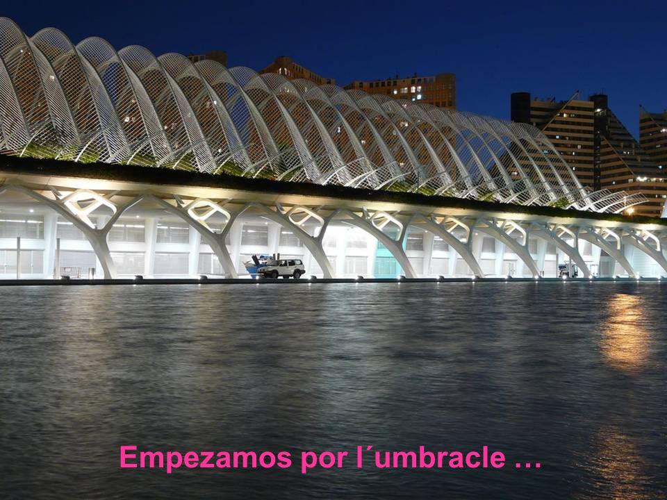 Es La ciudad de las Artes y las Ciencias, en Valencia, mi ciudad adoptiva, este es mi pequeño homenaje.
