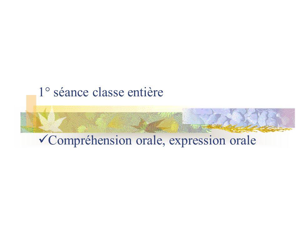 1° séance classe entière Compréhension orale, expression orale