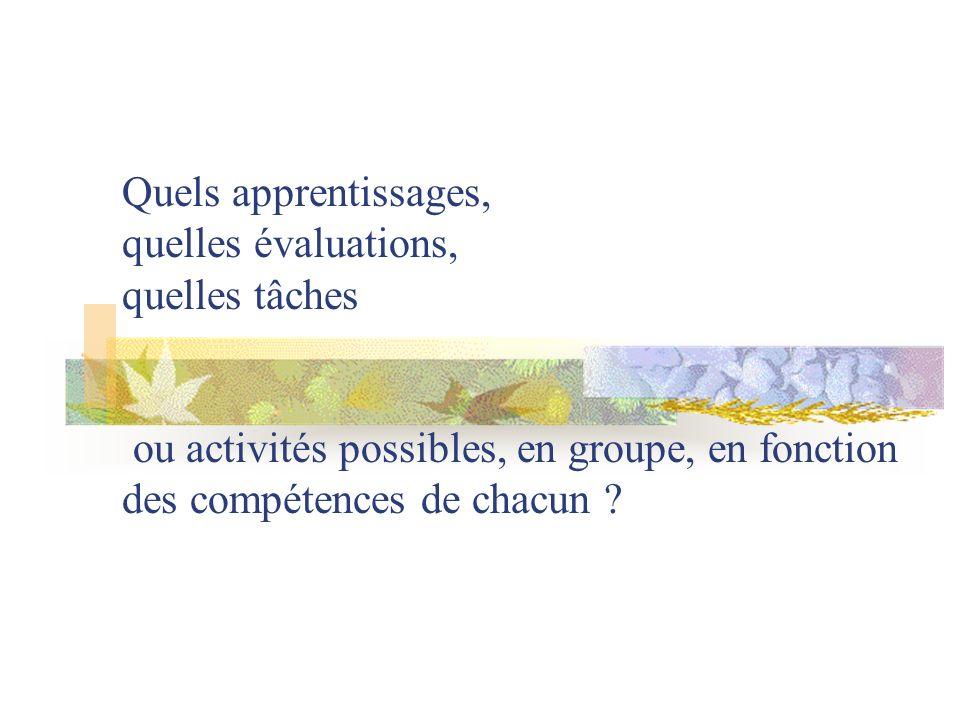 Quels apprentissages, quelles évaluations, quelles tâches ou activités possibles, en groupe, en fonction des compétences de chacun ?