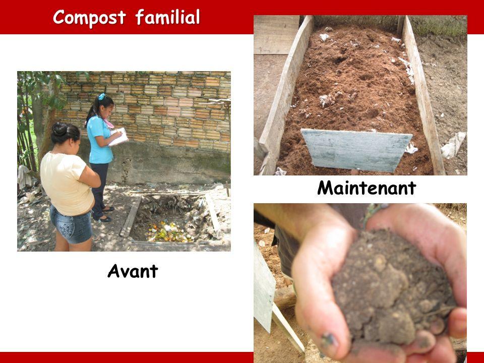 Compost familial Avant Maintenant