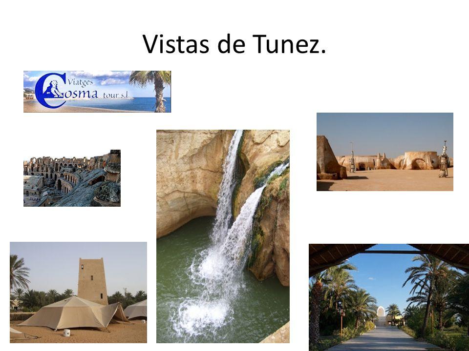 Vistas de Tunez.