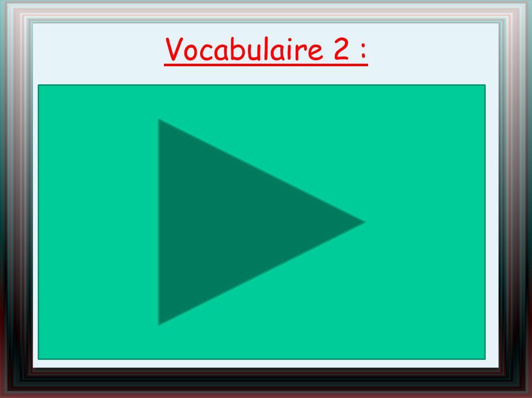 Vocabulaire 2 :