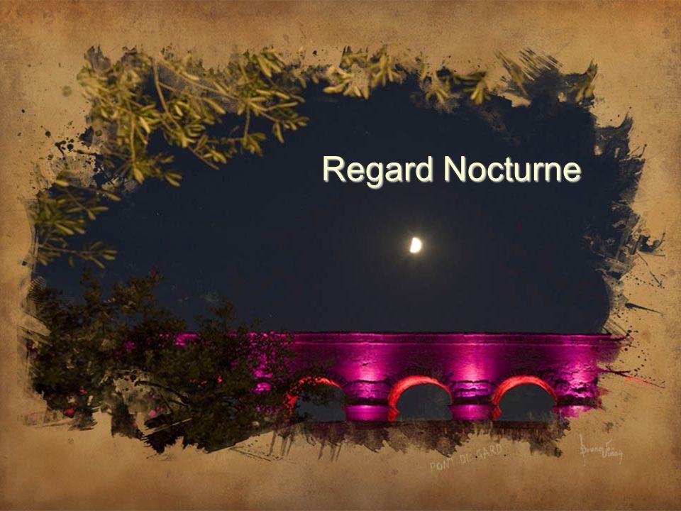 Construit sur trois étages avec les pierres extraites sur les lieux mêmes dans les carrières romaines environnantes, le sommet du pont domine le Gard,