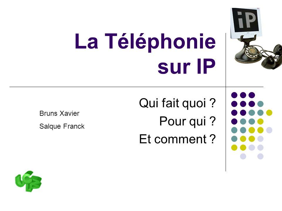 La Toip, qui fait quoi, pour qui et comment ?22 ToIP VoIP