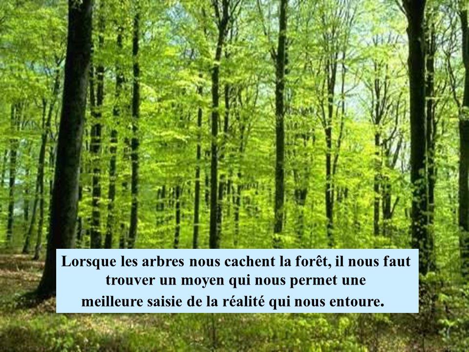 Lorsque les arbres nous cachent la forêt, il nous faut trouver un moyen qui nous permet une meilleure saisie de la réalité qui nous entoure.