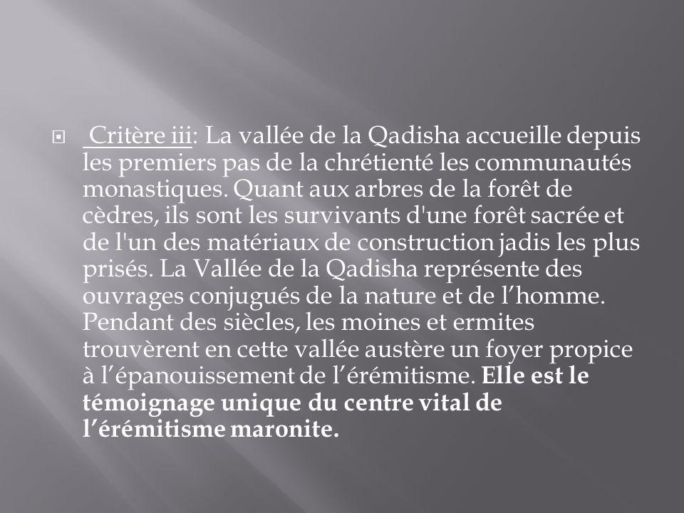 Critère iii: La vallée de la Qadisha accueille depuis les premiers pas de la chrétienté les communautés monastiques.