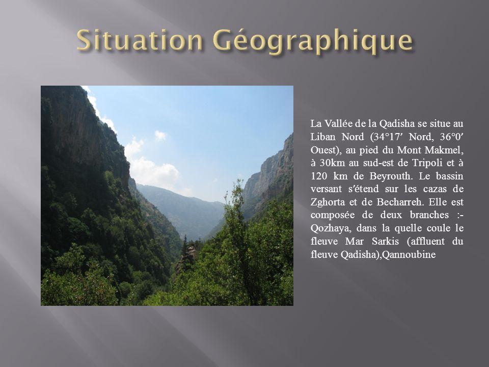 La Vall é e de la Qadisha se situe au Liban Nord (34°17 Nord, 36°0 Ouest), au pied du Mont Makmel, à 30km au sud-est de Tripoli et à 120 km de Beyrouth.