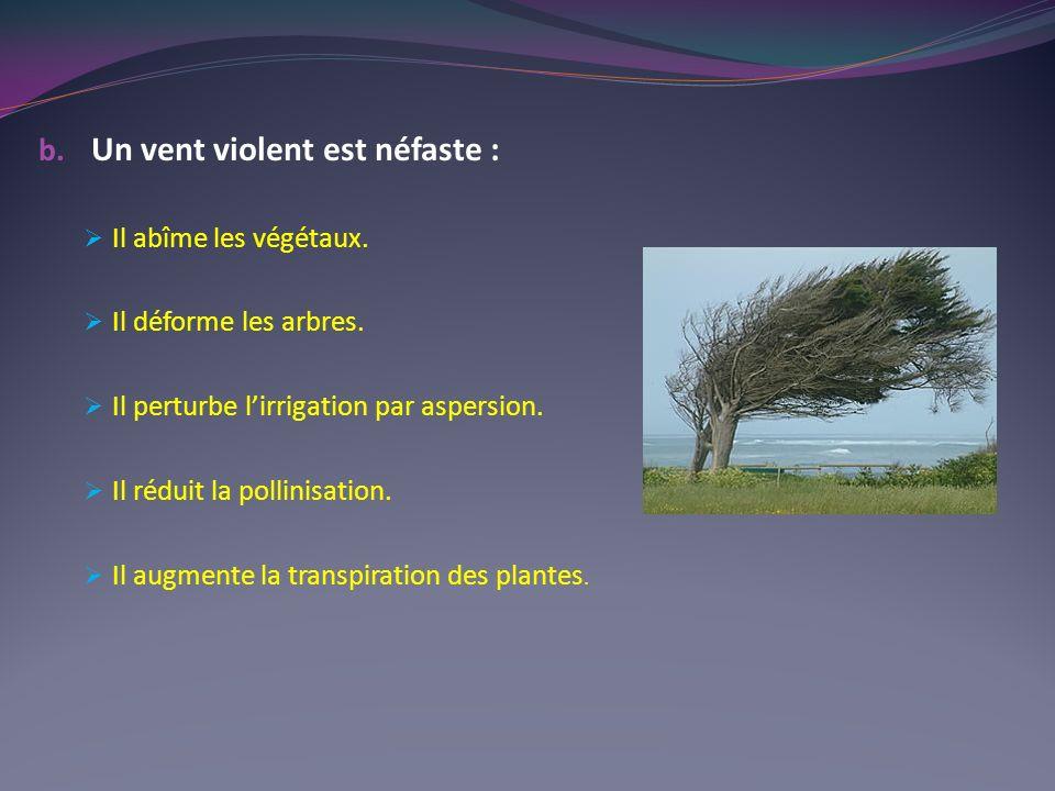 b.Un vent violent est néfaste : Il abîme les végétaux.