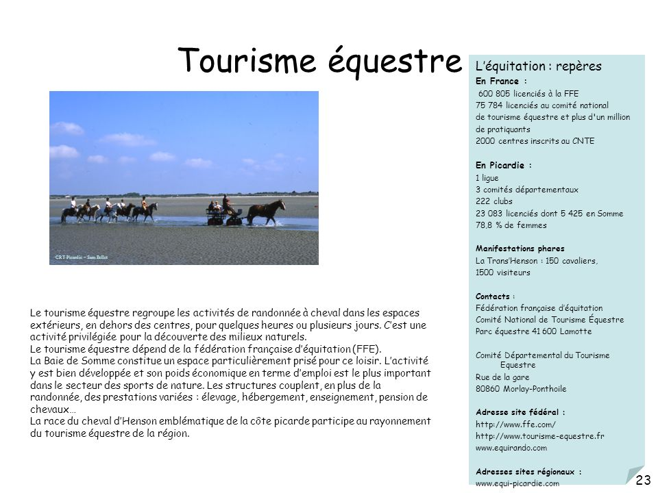 Tourisme équestre Léquitation : repères En France : 600 805 licenciés à la FFE 75 784 licenciés au comité national de tourisme équestre et plus d'un m