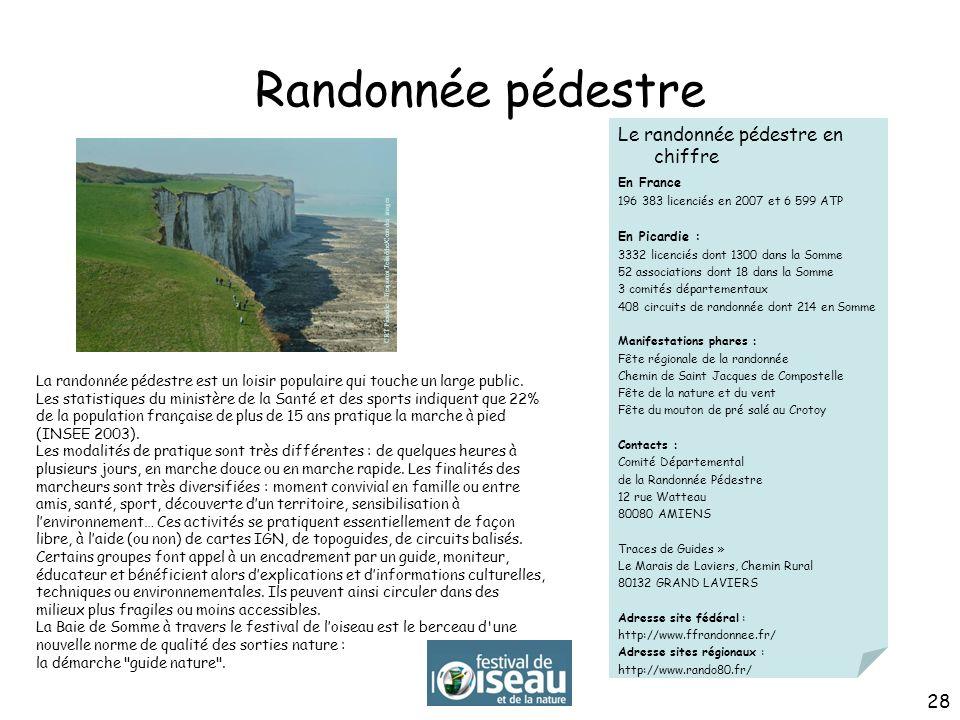 Randonnée pédestre Le randonnée pédestre en chiffre En France 196 383 licenciés en 2007 et 6 599 ATP En Picardie : 3332 licenciés dont 1300 dans la So