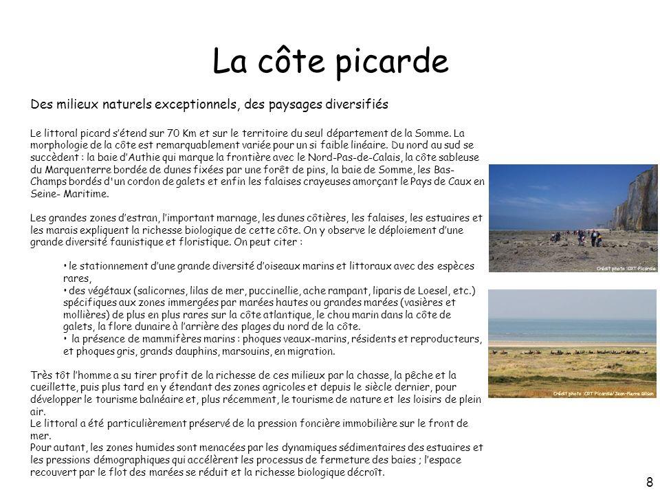 La côte picarde Des milieux naturels exceptionnels, des paysages diversifiés Le littoral picard sétend sur 70 Km et sur le territoire du seul départem