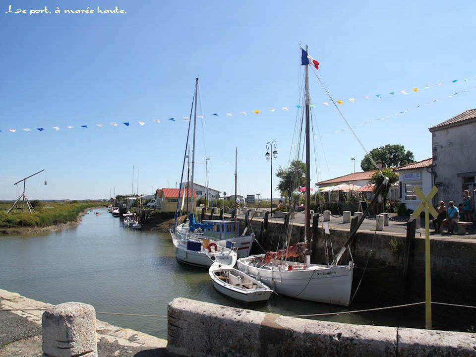 Cette charmante place est située devant le petit port de Mornac.