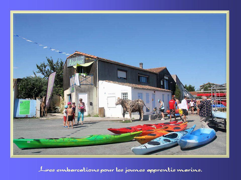 Les embarcations pour les jeunes apprentis marins.