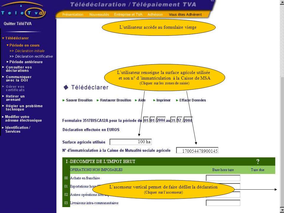 L utilisateur saisit sa déclaration sur un formulaire interactif Ce formulaire propose une aide en ligne et des contrôles (cliquez sur le point d interrogation pour ouvrir l aide en ligne) Lutilisateur saisit une base hors taxe pour un montant de 100.